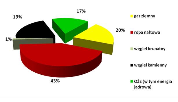 Zużycie Paliw w Unii Europejskiej